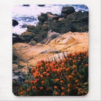 California Coastal Floral Mousepad mousepad