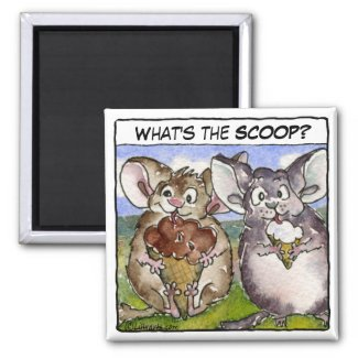 What's the Scoop? Cartoon Ice Cream Magnet magnet
