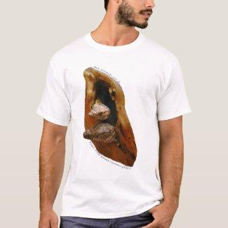 Pygmy Mulga 1 - Tshirt shirt