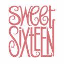 Sweet Sixteen Bag
