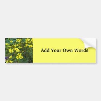 Yellow flowers bumpersticker