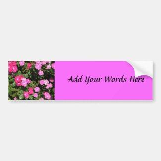 Pink flowers bumpersticker