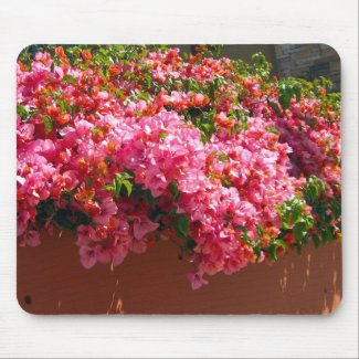 Pink Flowers in the Sun - mousepad