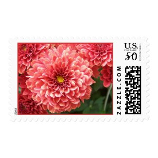 Pretty in Pink postage
