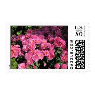Mums in the Garden stamp