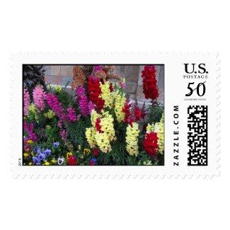 Beautiful Garden postage