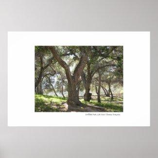 Griffith Park print