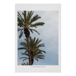 California Palm Trees print